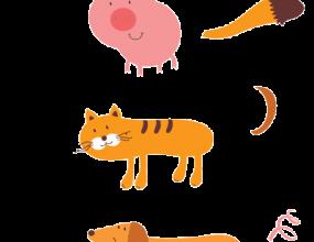 آموزش-حیوانات
