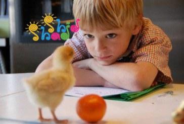 تفکر خلاق در کودکان