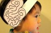 آموزش اعضای بدن (مغز)