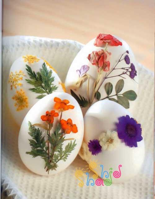 تخم-مرغ-هفت-سین